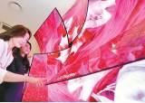 [<!HS>우리경제<!HE> <!HS>희망찾기<!HE>] OLED TV용 패널 등 미래 성장 동력으로 육성