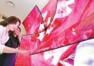 [우리경제 희망찾기] OLED TV용 패널 등 미래 성장 동력으로 육성