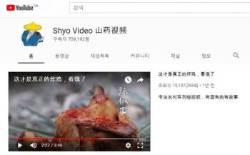 '중국판 나는 자연인?' 방화벽 뚫고 잘 나가는 中유튜버들