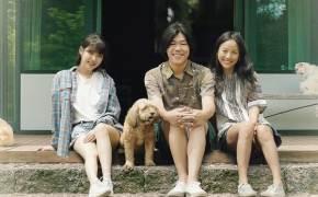 효자 '효리네 민박'…유명인 따라 오르락 내리락하는 제주관광 사실