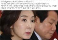 """나경원 '반문특위' 해명에…전우용 """"한국인이 못 갖는 국어실력"""""""