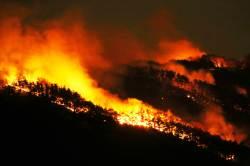 """구미 산불, 바람 타고 빠르게 번져…""""항곡·예강리 주민 안전 주의"""""""