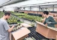 [국민의 기업] 수확후관리 기술 확립해 농산물 수출 증대