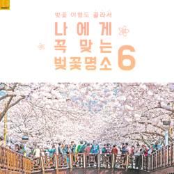 [카드뉴스] 벚꽃 여행도 골라서… 나에게 꼭 맞는 벚꽃 명소 6