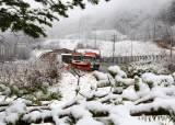 [서소문사진관]요즘 날씨 왜 이러나, 전국은 <!HS>미세먼지<!HE> 강원엔 눈 남도는 꽃