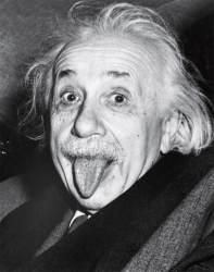 [이코노미스트] 아인슈타인은 목공일로 재충전