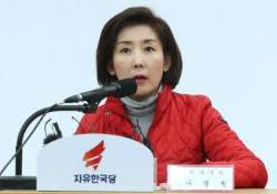 """나경원 """"김연철,박영선 보고서 없다""""에 여권은 """"정치공세"""""""