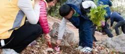 북한산에 나무 1000그루...한국암웨이 미세먼지에 맞서 공기 정화 캠페인