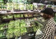 [속보] 3월 소비자물가 0.4%↑…2년8개월만에 상승률 최저