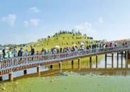 [2019 국가브랜드 대상] 풍성한 축제, 콘텐트로 관광객 발길 이어져
