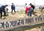 '100억 수임' 최유정에 6년 선고 판사, 퇴임 두달만에 가습기 영장심사 변호사로