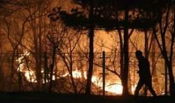 """[속보] 동해시도 산불 발생…""""망상동 인근 주민 대피령"""""""