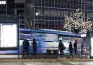 [권혁재 핸드폰사진관] 버스 정류장에 핀 꽃등, 목련