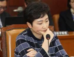 '이언주 불륜설' 유포한 유튜버에 벌금형