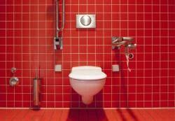 용변본 뒤 손 씻지 않겠다. 공중화장실에선 더더욱!