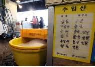 """[단독] 자민당 """"대장균 나오는 한국산 수산물 수입 금지하라"""""""