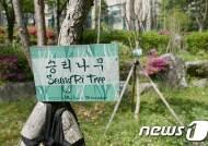 로이킴·박유천 이어 '승리 숲'까지…중국팬들이 '승리나무' 심기도