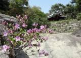 [서소문사진관] 서울의 숨은 정원 문이 열렸다. 의친왕 별궁 '성락원' 개방