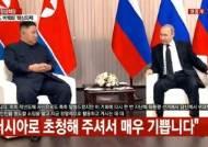 """[속보]푸틴 """"김 위원장의 북미관계 정상화 노력 지지"""""""