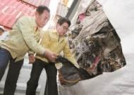 되돌아온 필리핀 불법 수출 쓰레기 4666t, 소각 본격화