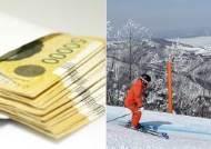 '다문화 교육' 지원금 타 자녀와 스키 탄 교장, 벌금 500만원