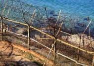 동해안 철책선 30×50㎝ 뚫린 상태로 발견돼 한때 비상
