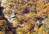 설악산 케이블카 고장…관광객 170여명 고립 후 구조
