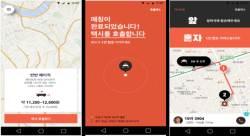 """""""앱으로 택시 동승 불가""""…차량공유에 철벽 친 <!HS>규제<!HE> 샌드박스"""