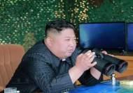"""'발사체냐 미사일이냐' 정대진 교수 """"종이비행기 아니면 뭐든 위협"""""""