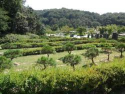 동네 가까이 공원묘지 조성돼야 하는 몇가지 이유