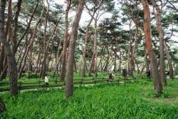 의외로 멋지네? 동네 사람만 아는 서울 근린공원 4