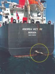호르무즈해협 유조선 피습…트럼프 B-52 띄워 이란에 경고
