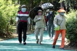 한국인 90%가 비타민D 부족, 햇빛만 쬐도 생기는데 왜?