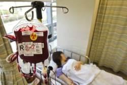 """'임신경험 있는 여성' 혈장 수혈하면 급성 폐손상 우려...질본 """"수혈 막을 것"""""""