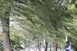 주말 더위 식혀줄 비 내린다…제주 강풍에 최고 200㎜ 폭우