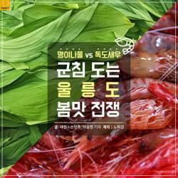 [카드뉴스] 독도새우 vs 명이…군침 도는 울릉도 봄맛 전쟁