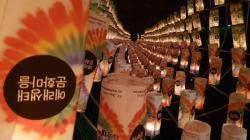제주도 봄여행 축제 소식! 예래마을 서귀포 등 축제... 핫한 여행코스로 자리매김