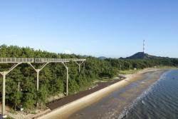 갈대밭, 해변 스카이워크의 고장 서천, '생태관광 메카' 만든다.