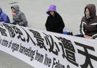"""""""80일 매달아도 안죽어"""" 北, 中서 온 파룬궁에 골머리"""