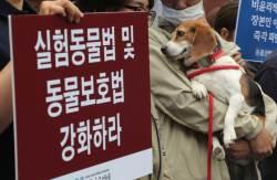 복제견 '메이' 학대 의혹 <!HS>서울<!HE>대 수의대 압수수색