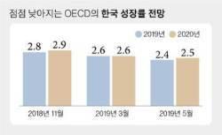 OECD 韓성장률 또 낮췄다…무색해진 靑 '경제 낙관론'