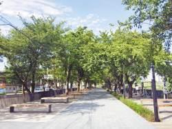 [시선집중] 물향기수목원·아모레원료식물원·둘레길문화·낭만 흐르는 생태·뷰티도시 조성 '맞손'