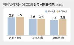 """성장률 또 낮췄다…OECD """"최저임금 인상 완화를"""""""