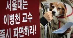 '복제견 실험' 이병천 교수 조카, 삼촌 낸 문제 풀고 대학원 입학