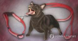 목줄 길이 조절 실패→4살 아이 개물림, 견주는 '벌금형'