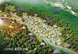 [분양 FOCUS] 치악산 자연휴양림 옆, 토지+주택 5900만원