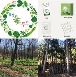 임업진흥원, 청정한 산림먹거리 브랜드 '청정숲푸드' 런칭