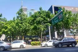 대구 '강남' 최고층 아파트 분양 첫 주말 '인산인해' 이룬 까닭