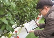 [국민의 기업]스마트팜 기술로 농업의 생산·효율성 높인다