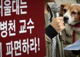 <!HS>서울<!HE>대, '조카 입학비리 의혹' 이병천 수의대 교수 수사 의뢰